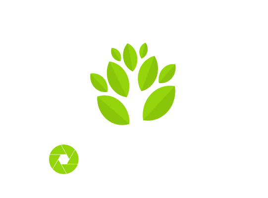 Catalogue du Club de photographie des Sources